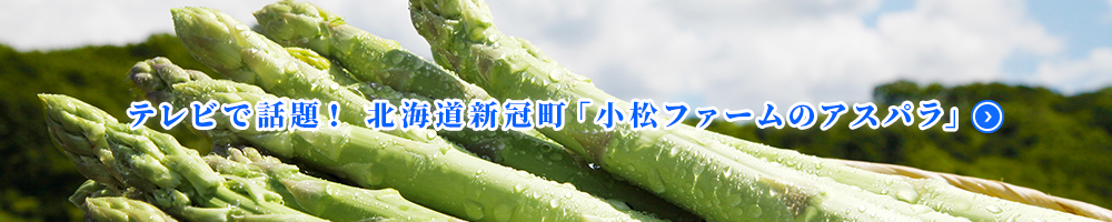frozen-yogurt-banner 営業案内